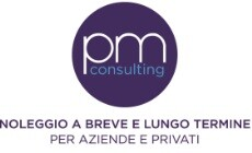 Logo PM Consulting